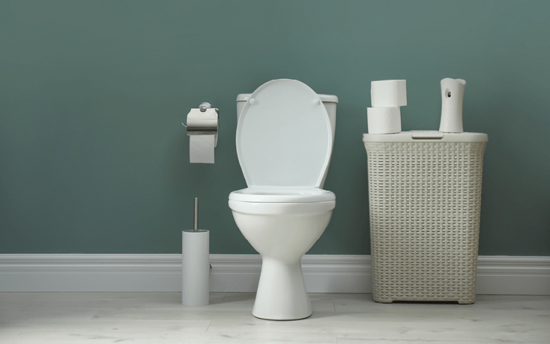 Wondrous The Best Compact Toilet For Your Small Bathroom Pabps2019 Chair Design Images Pabps2019Com
