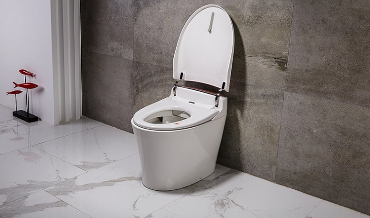 EAGO Toilet Reviews
